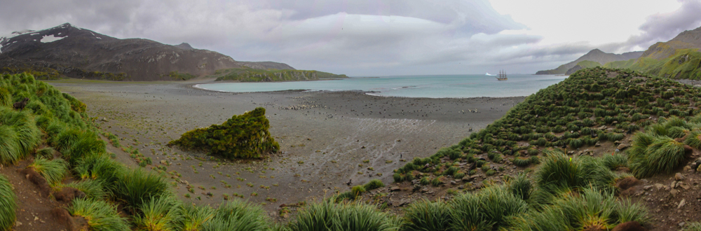 Panorama Right Whale Bay (Kopie)-2-2